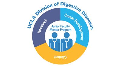 Faculty Mentor Program - UCLA Digestive Diseases Faculty