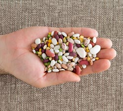 handful of dried beans image