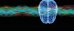brain waves image