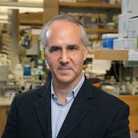 Daniel H. Geschwind, MD, PhD