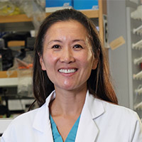 Linda M. Liau, MD, Ph.D.