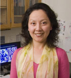 Sophie Song, MD, PhD