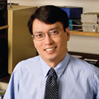 William H. Yong, MD