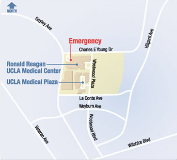 Maps & Directions UCLA Transplantation Services Los Angeles CA