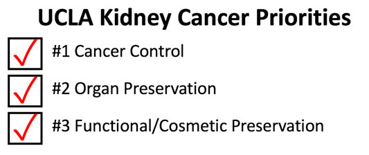 Kidney Cancer Treatment Prioritites