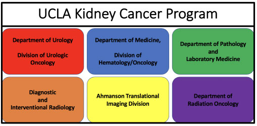 History of Kidney Cancer Program